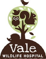 Vale Wildlife Hospital
